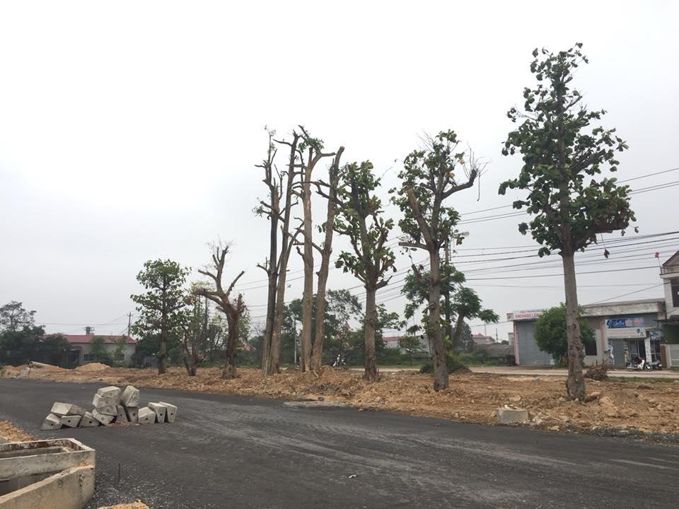 Nhà đất Quảng Bình